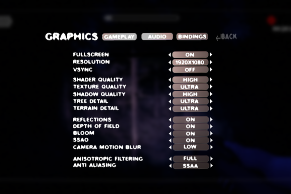 Slender: The Arrival graphics settings