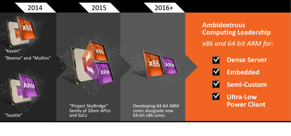 amd skybridge roadmap 2