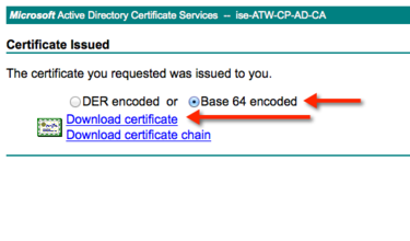 Download the Signed Cert