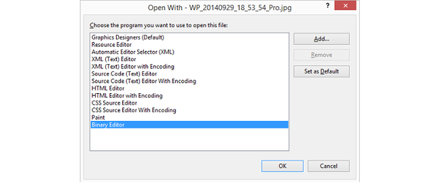 Open with Binary Editor