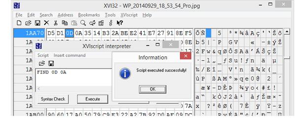 XVI32 scripting