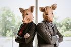 Corporate Swine