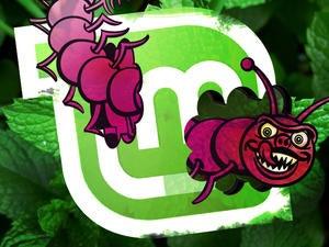linux mint bugs