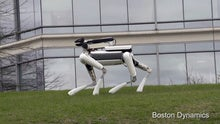 Boston Dynamics' four-legged robot climbs stairs, slips on a banana skin