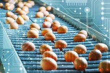 Can blockchain make food safer in China?
