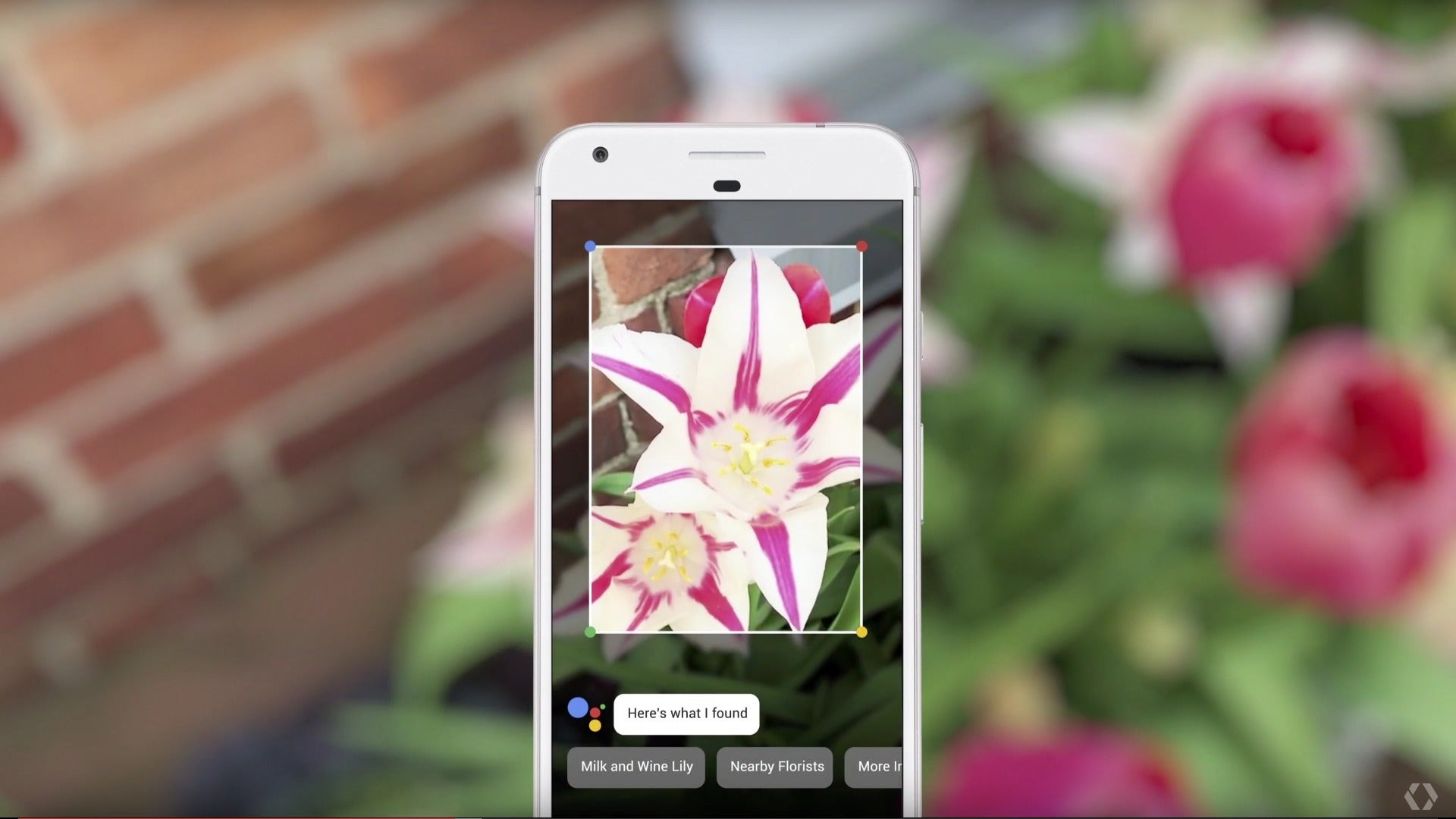 Google lens 6 things we can 39 t wait to try pcworld for Goodl